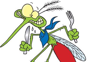 komarac1