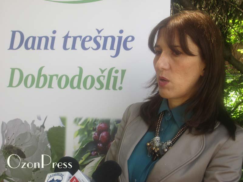 Sanja Radicevic