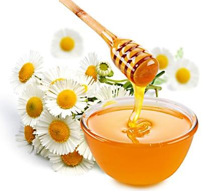 pčelari-2