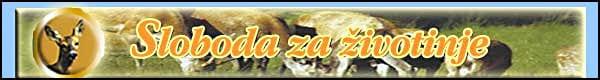 zivotinje-logo