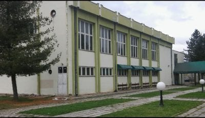 skola-dragacevo-6