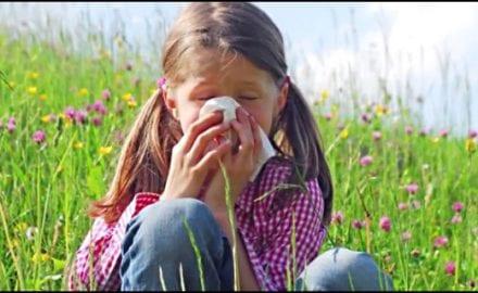 ordinacija-polen