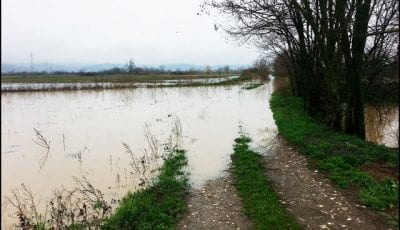 Baluga-poplava-1