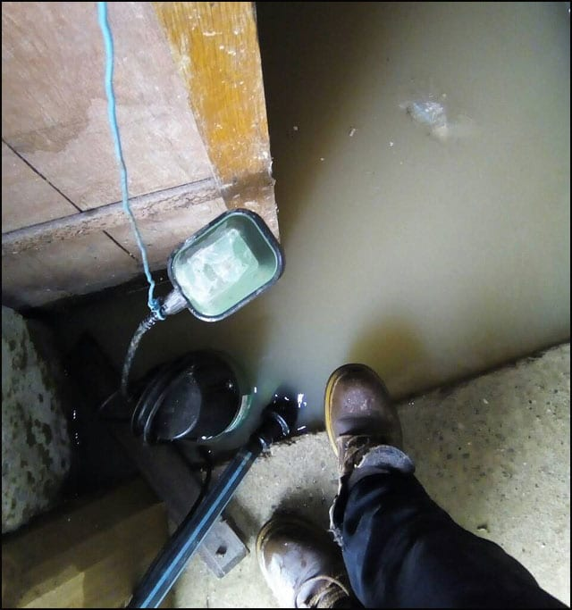 poplava-karanac-2