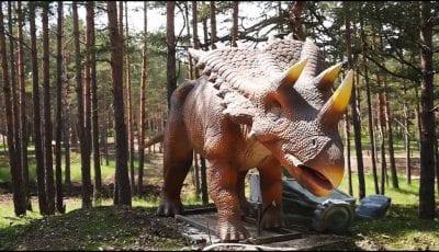 dina-park-zlatibor